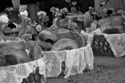 Portuguese Feasts